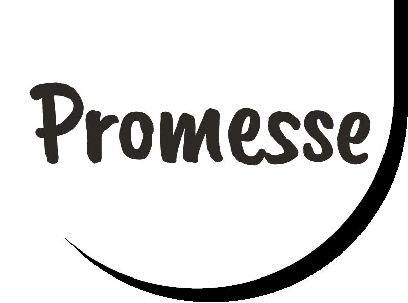 Promesse Petfood